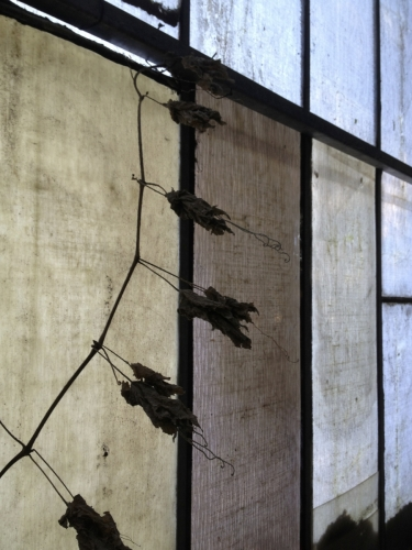 Glasfensterdach