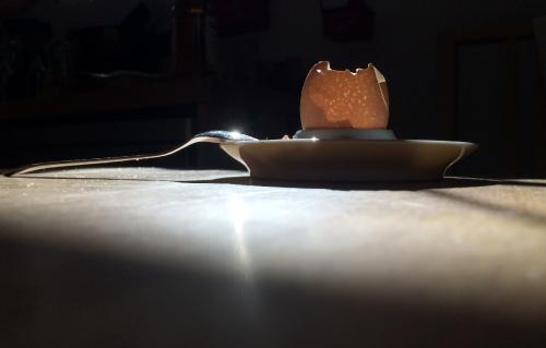 Eierschale im Sonnenlicht