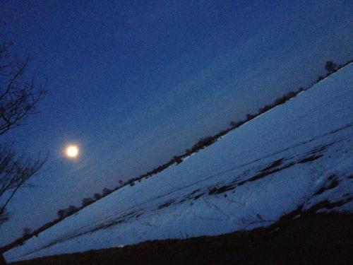 Nachtspaziergang bei Vollmond - im Winter